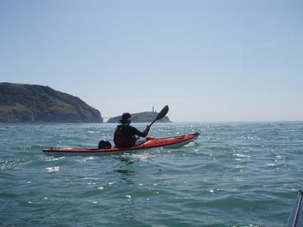 Ny-Wales-guided-havkajaktur